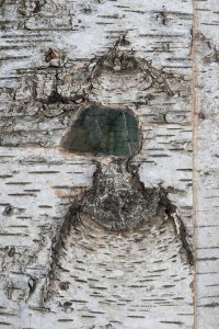 Grand-Miroir-Labradorites-d3-200x300