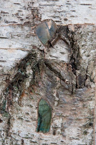 Miroir Labradorite 400x600-détail1