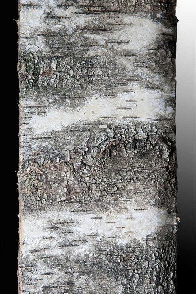 Grand Miroir Aspen détail_6