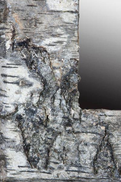 miroir-sirius-detail2-600x400