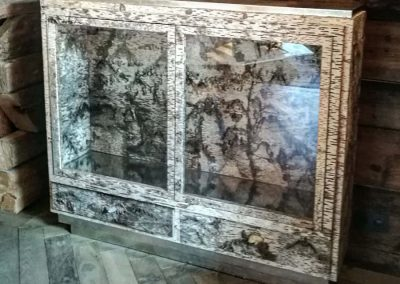 vitrine Bjork